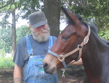 Butch and his mule