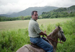 Riding Horses in Puerto Rico