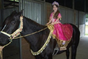 Shelby Horse Princess